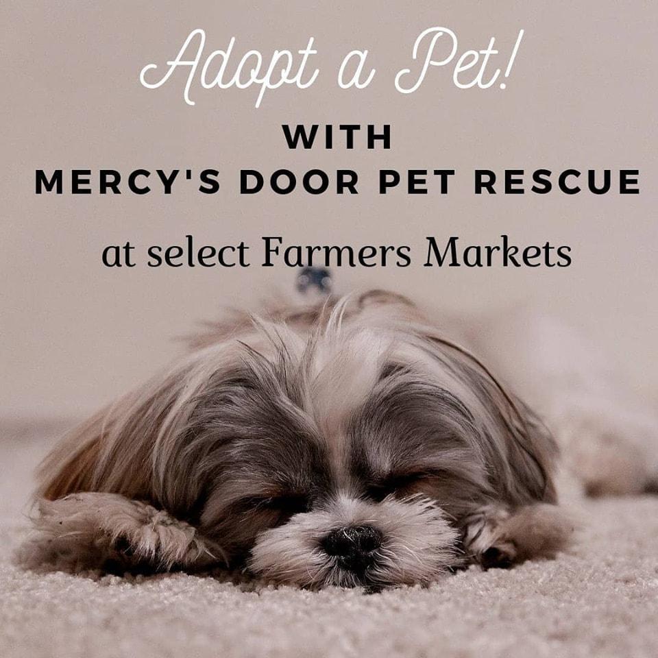 Events - Mercy's Door Pet Rescue - Ohio